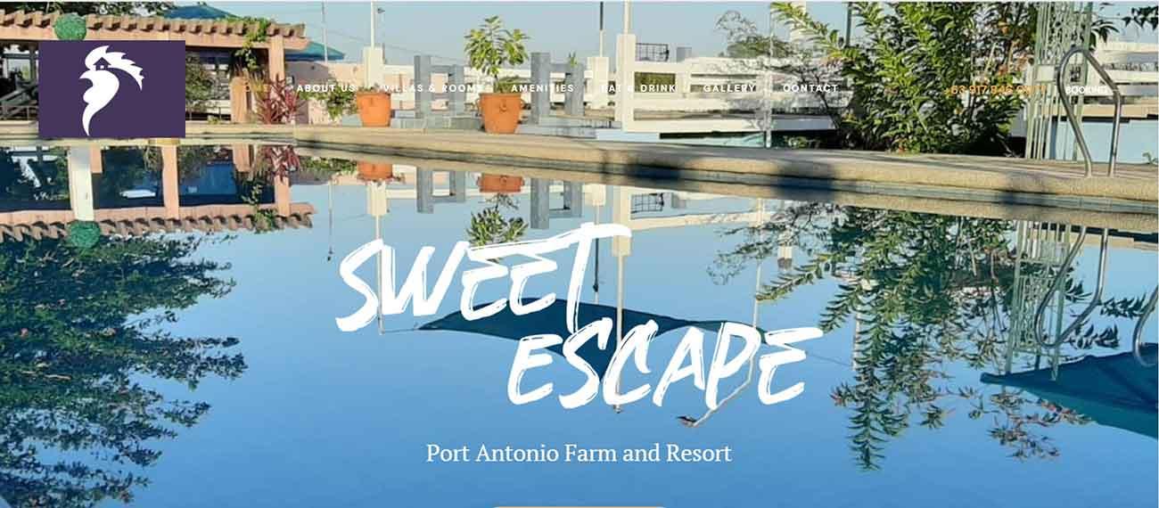 Port Antonio Farm